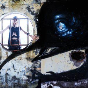 Asylum (10)