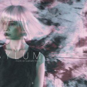 Asylum (4)